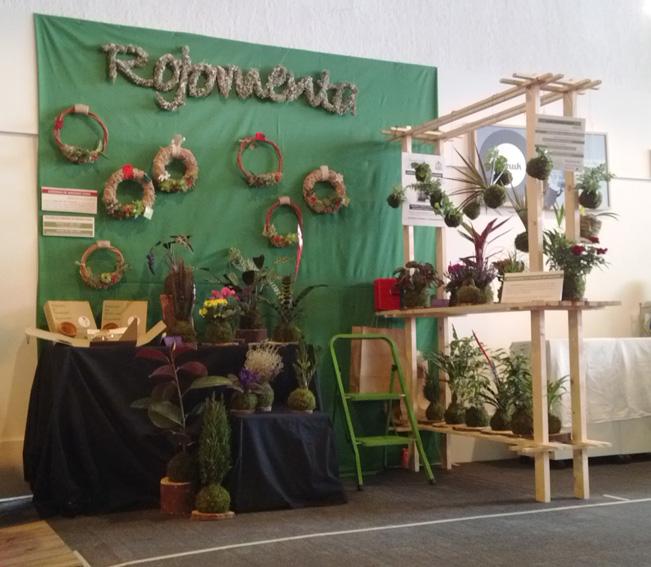 Nomada_market_rojomenta 3
