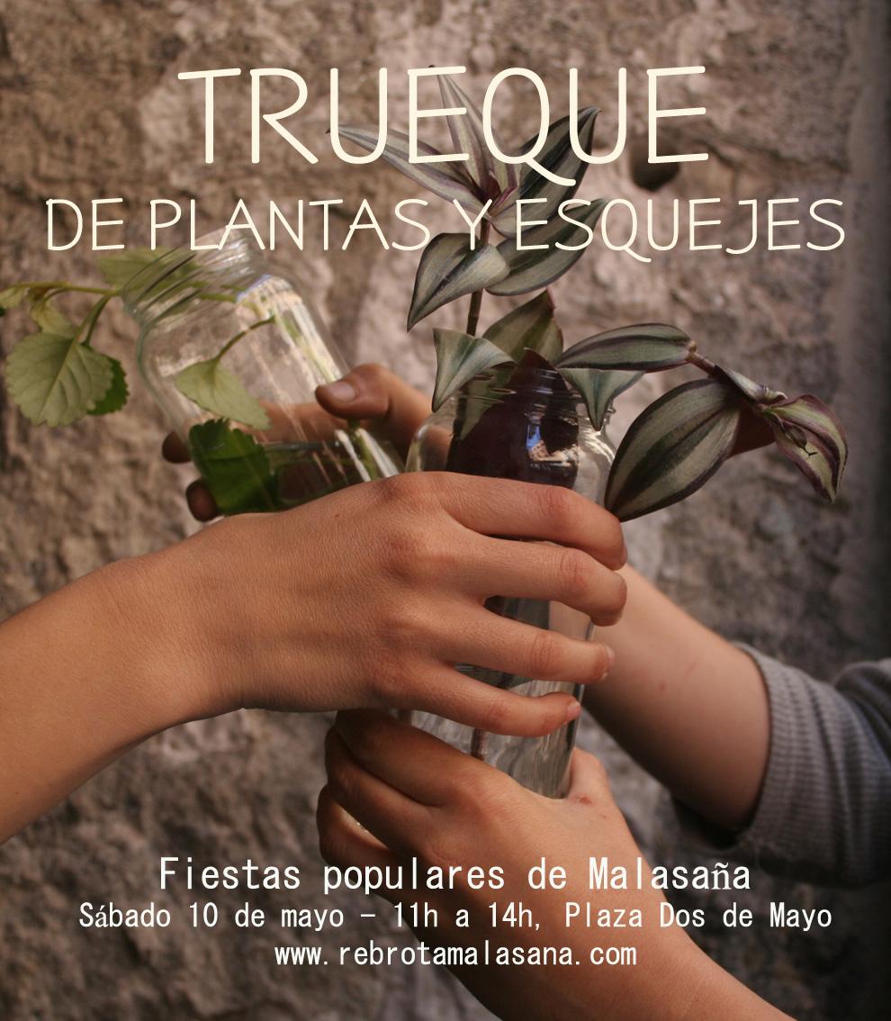 TRUEQUE_Rebrota_Malasaña_rojomenta