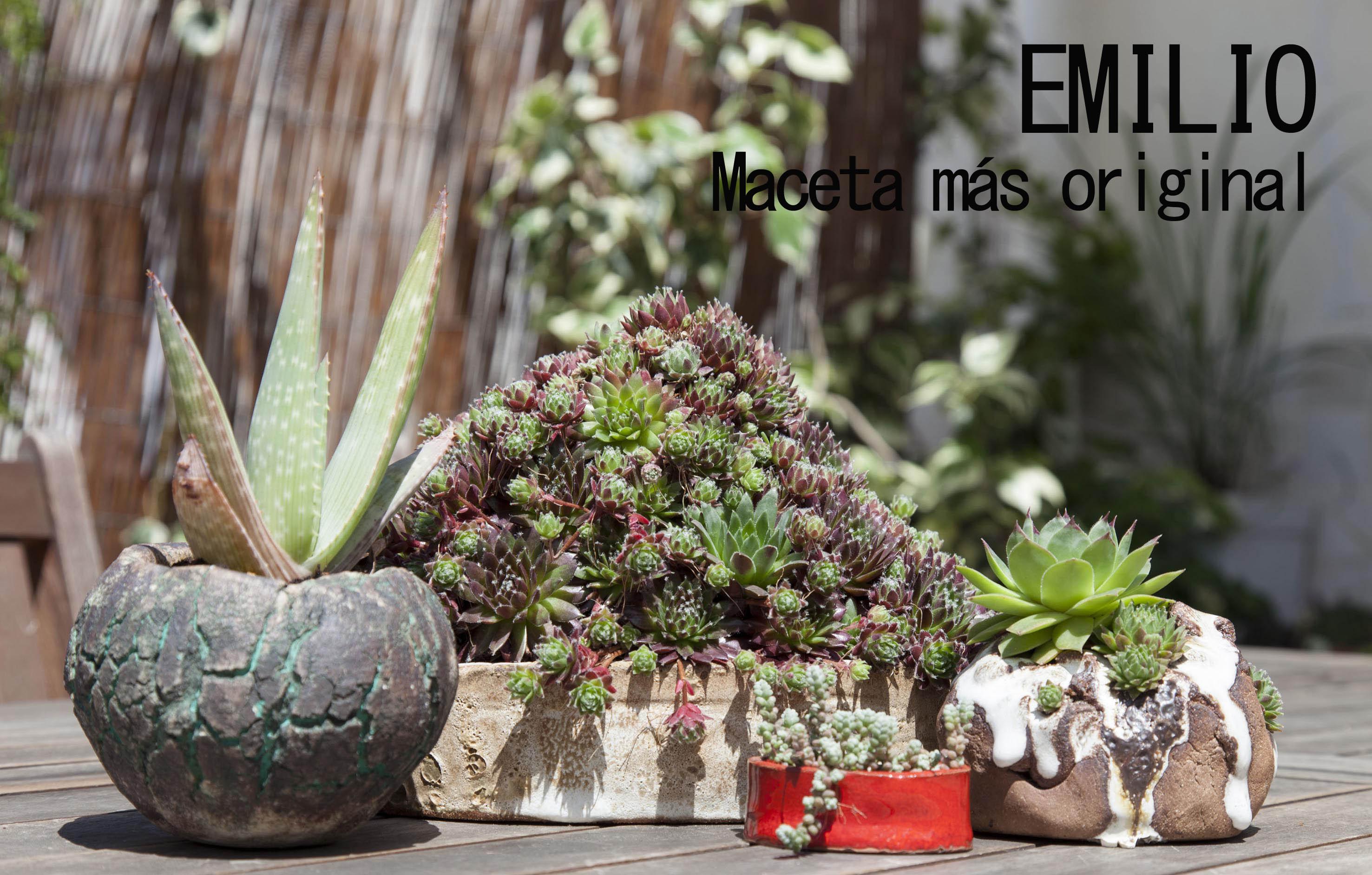 Emillio_maceta_roriginal_rebrota_malasana_rojomenta_ganadores_concurso_balcones_madrid