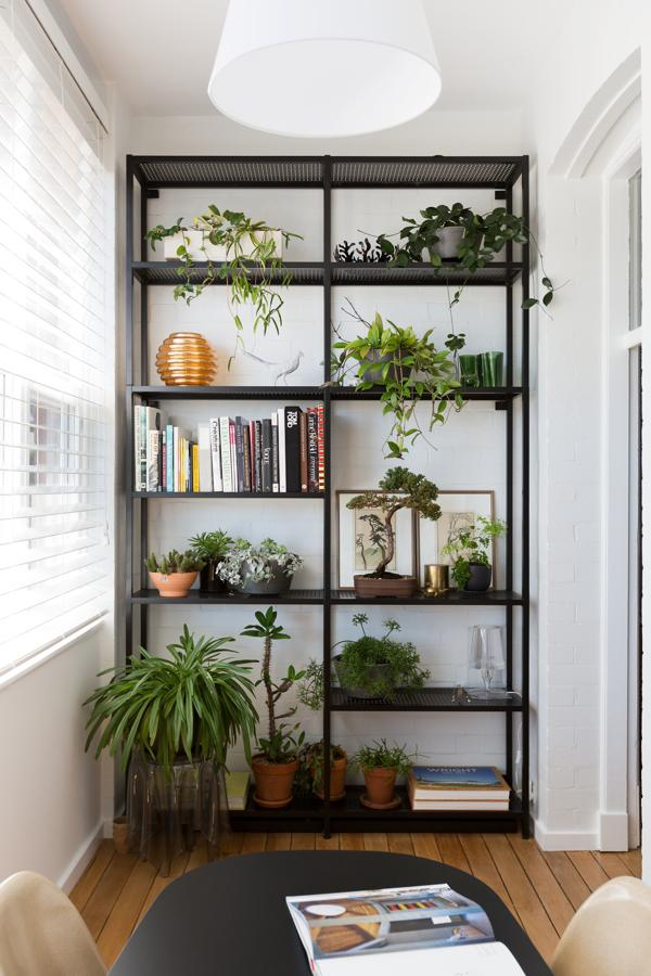 vertical-shelves-for-plants