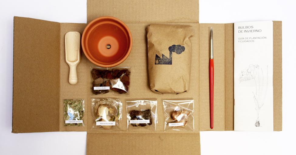 Kit_bulbos_invierno_fabrica_textura_rojomenta_2