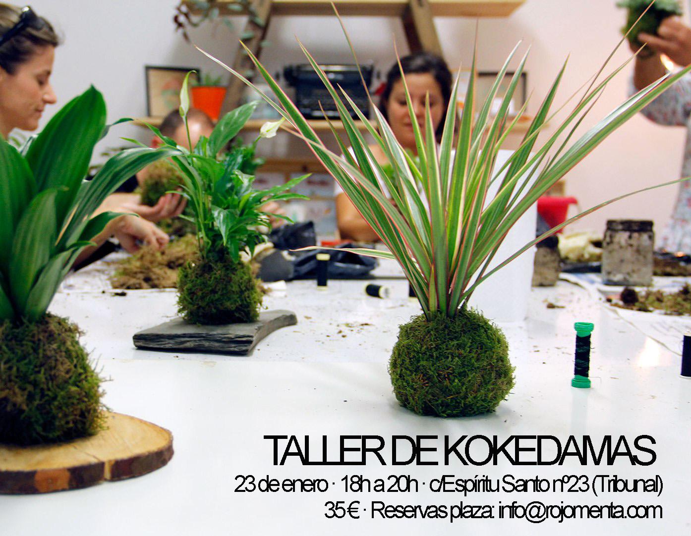 taller_kokedamas_vale_regalo_navidad