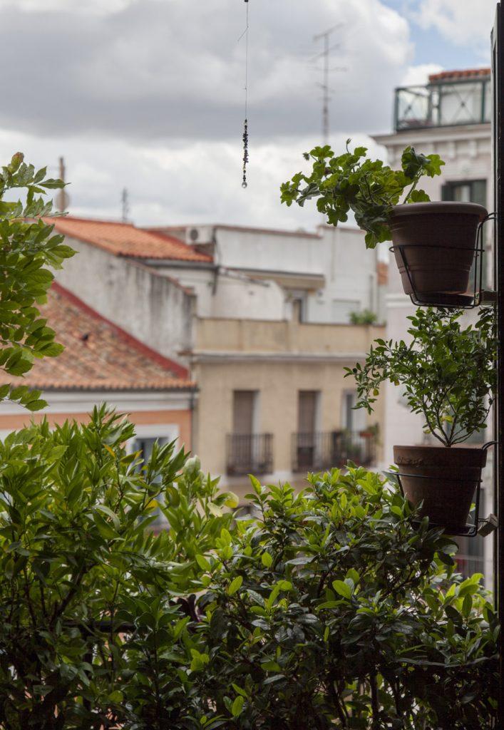 Rebrota_Malasaña_Rojomenta_balcones_Madrid