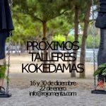 Próximos talleres de kokedamas