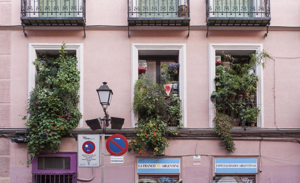 Curso en Casa Encendida sobre la jardinería urbana como herramienta de transformación social