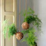 8 razones para decorar con kokedamas