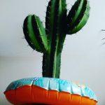 ¿Qué hacer con tus plantas en vacaciones?