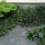 Elaboramos jardines en Madrid