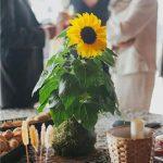 Decoración para una boda con kokedamas de Rojomenta