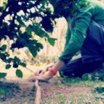 Riego automático para jardinería en Madrid por Rojomenta