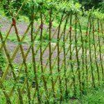 Valle de mimbre para tener una jardín vivo