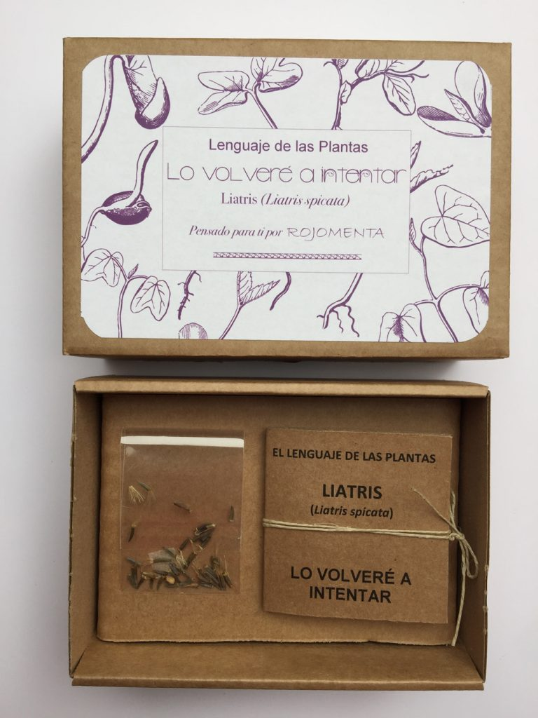 caja_de_semillas_de_regalo