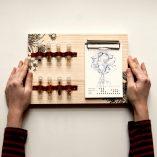 Kit de semillas de Fábrica de texturas y Rojomenta