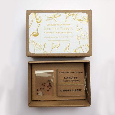 """Caja de semilla de coreopsis con mensaje de """"Siempre alegre"""""""