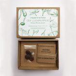 """Caja de semilla de glicinia con mensaje de """"Dar la bienvenida"""""""