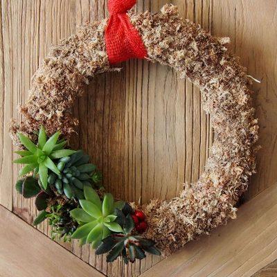 Corona de navidad con planta crasa