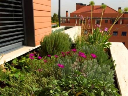 Un diseño de un jardín en un balcón