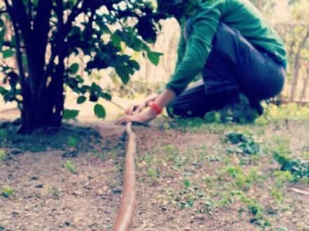 Riego automático para jardinería de Rojomenta