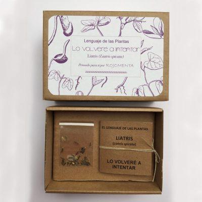 """Caja de semilla de liatris con mensaje de """"Lo volveré a intentar"""""""