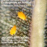 Curso on-line: Jardines sin tóxicos. Alternativas a los productos fitosanitarios de síntesis