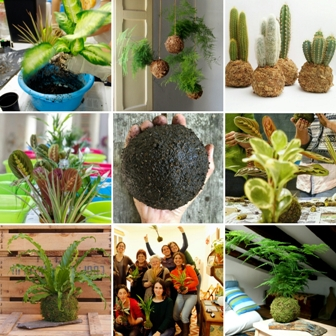 taller con plantas madrid