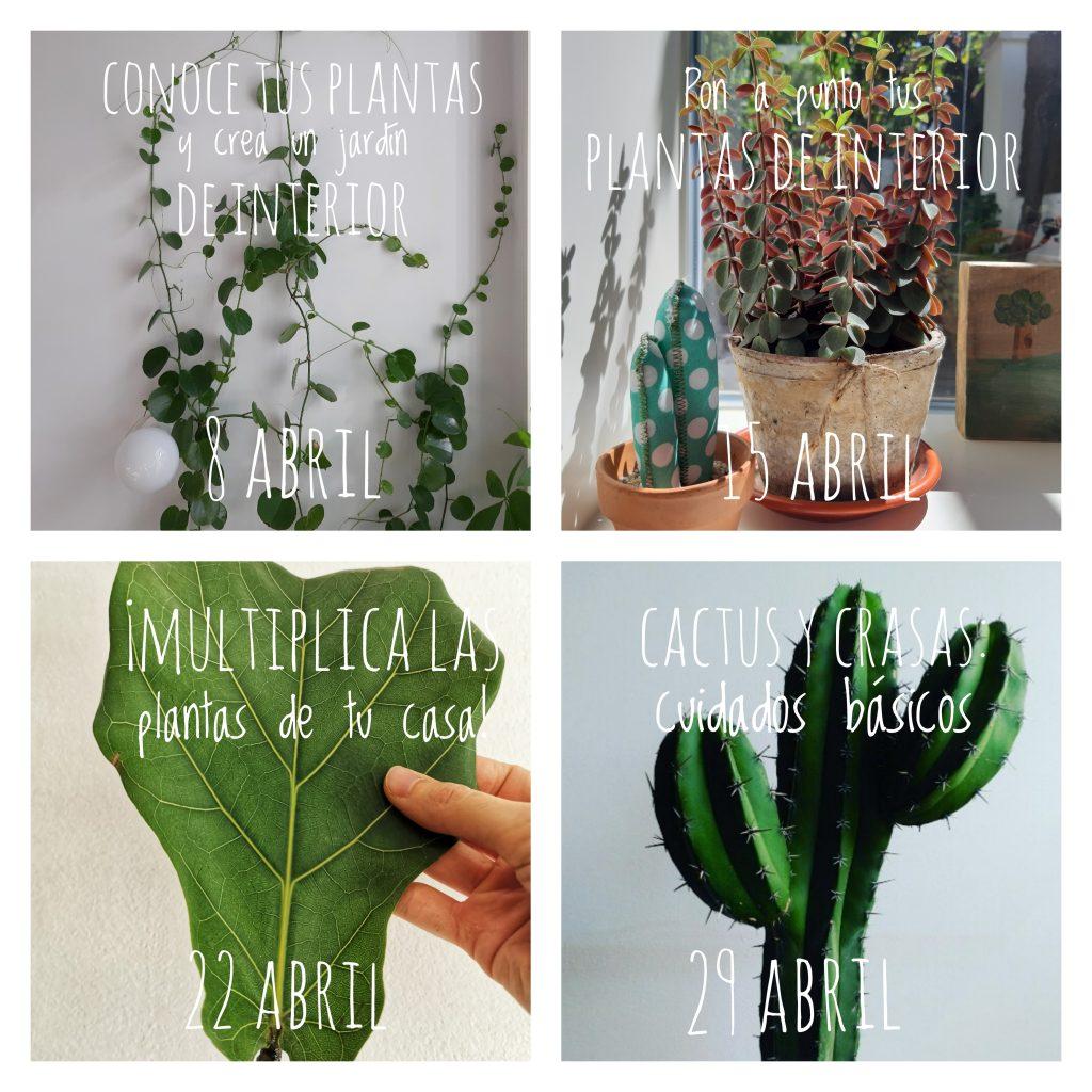 Cursos jardinería Madrid
